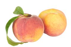 Ripe Peach with Leaf Stock Image