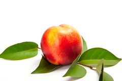 Ripe peach with leaves isolated on a white Stock Photos