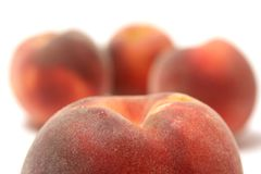 Ripe peaches Stock Images