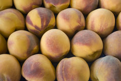 Ripe peaches. Ripe peach close up (selective focus Royalty Free Stock Photo