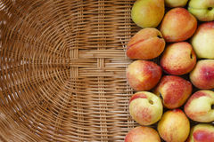 Ripe peaches in basket. Some peaches in a basket Royalty Free Stock Photo