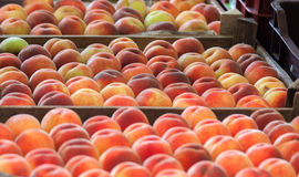 Ripe peaches in a box on a fruit market Stock Photography