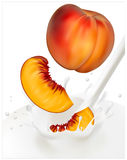 Ripe  peaches falling into the milky splash Royalty Free Stock Photography