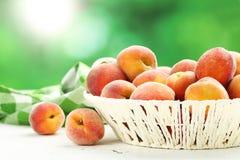 Ripe peaches fruit Stock Image