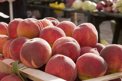 Ripe Peaches At Market. A crate of ripe peaches for sale at the Dubrovnik farmer's market royalty free stock images