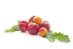 Ripe peaches on white background. Ripe peaches, nectarines and apricots isolated on white background Stock Images
