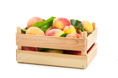 Ripe peaches in a wooden box Royalty Free Stock Photo