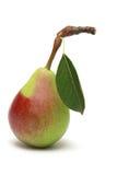 Ripe pear Stock Image
