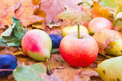 Ripe pear apple grapes fall fruits on leaves Stock Photo