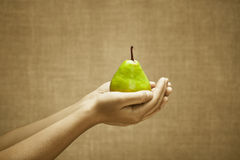 Ripe pear in female hands Royalty Free Stock Image