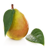 Ripe pear with green leaves isolated on white background. Royalty Free Stock Images