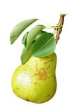 Ripe pear isolated Royalty Free Stock Photography