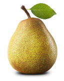 Ripe pear Stock Images