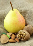 Ripe pear with sweet nuts Stock Images