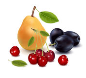 Ripe pear, three plums with leaves and cherries. Stock Photo