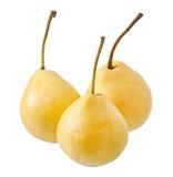 Ripe pear Royalty Free Stock Photos