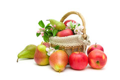 Ripe pears and apples on a white background Royalty Free Stock Photo