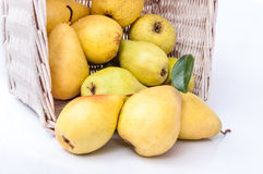 Ripe pears in a basket isolated on white background. Yellow pears in a basket isolated on white background Stock Photography