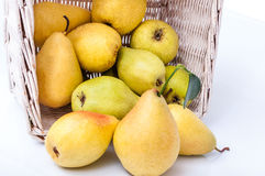 Ripe pears in a basket isolated on white background. Yellow pears in a basket isolated on white background Royalty Free Stock Images