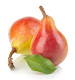 Ripe pears close-up isolated Stock Image