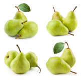 Ripe pears. Collection  on white background Stock Photography