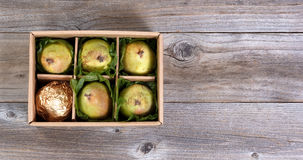 Ripe pears gift wrapped in box for the holiday seasons Royalty Free Stock Photography