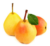 Ripe pears in the group Royalty Free Stock Images