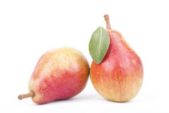 Ripe pears. Royalty Free Stock Image