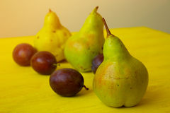 Ripe pears on rustic table. Ripe fruits of  plums and pear  on rustic background. Fresh pears over wooden background. fresh ripe organic pears and plums  on a Stock Photography
