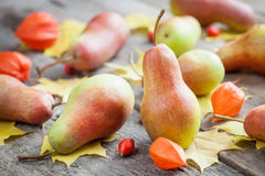 Ripe pears on wooden table with autumn leaves and berries. Stock Photography