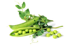 Ripe peas with green leaf Royalty Free Stock Photo