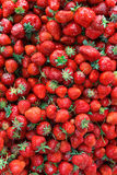 Ripe perfect strawberry. Top view. Royalty Free Stock Image