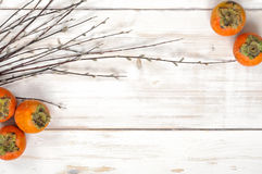Ripe Persimmon fruit with willow twigs Royalty Free Stock Photo