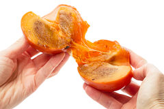 Ripe persimmon in hand Royalty Free Stock Image