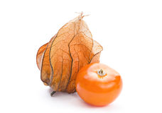 Ripe Physalis Royalty Free Stock Photo