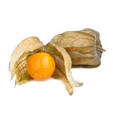 Ripe Physalis fruits Stock Photos