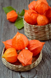 Ripe physalis (Solanaceae) in basket Royalty Free Stock Photos
