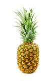 Ripe pinapple Royalty Free Stock Photo