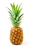 A ripe pineapple. Isolated on a white background Royalty Free Stock Photo