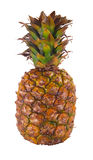 Ripe pineapple. On white background Royalty Free Stock Photos