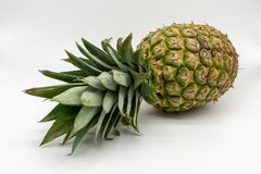 A ripe juicy and fresh pineapple royalty free stock photo
