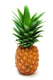 Ripe pineapple. Isolated on white stock photo