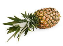 Ripe pineapple Royalty Free Stock Photo