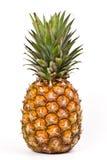 Ripe pineapple Stock Photography