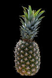 Ripe pineapple on the black Stock Images