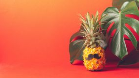 Ripe pineapple with a black mustache on a red background, with large green leaves of the plant. Funny face from food. stock images