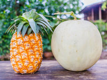Ripe pineapple and Cantaloupe Stock Images
