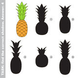 Ripe Pineapple. Find true correct shadow. Ripe Pineapple with different shadows to find the correct one. Compare and connect object with it true shadow. Easy Royalty Free Stock Images