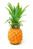 Ripe Pineapple Fruit Stock Photo