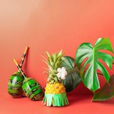 Ripe pineapple in a green skirt maracas on a red background. Recreation and party concept. Horizontal frame. royalty free stock photo